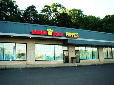 Shake A Paw • Green Brook, New Jersey Location