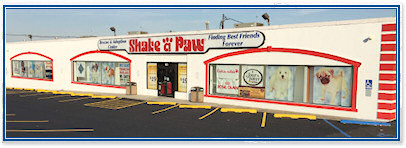 Shake A Paw - Union, New Jersey